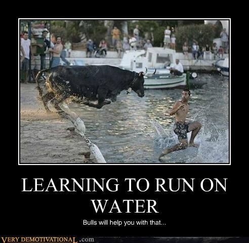 animals bulls running sad but true teachers Terrifying wtf - 5101602560