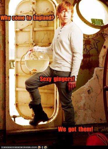 Cheezburger Image 5101677824