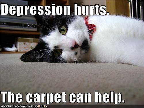 can caption captioned carpet cat depression help hurts - 5101803264
