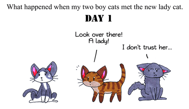 comics cute cats meeting - 5102085
