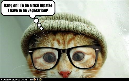 bad idea caption captioned cat do not want glasses hang on hat hipster mistake real realization rules tabby vegetarian - 5102128896