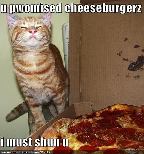 Cheezburger Image 5102286848
