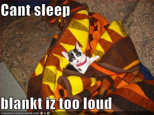 blankets,kitten,lolcats,lolkittehs