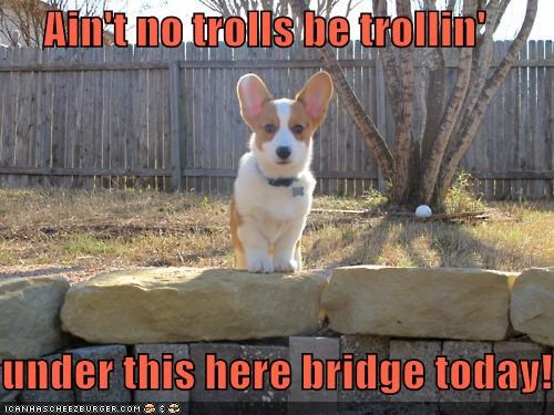 bridge corgi in charge outdoors protecting protection troll