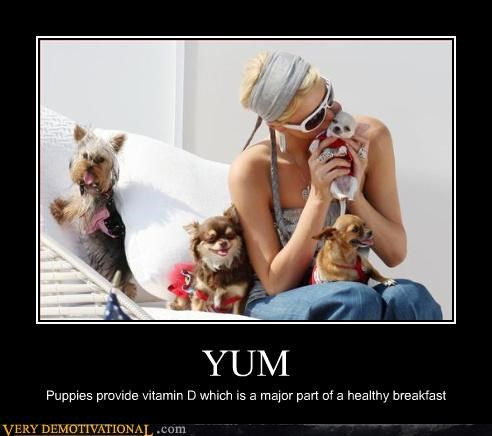 YUM Puppies provide vitamin D which is a major part of a healthy breakfast