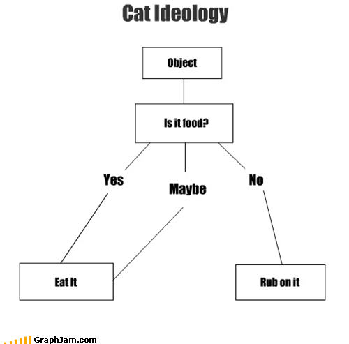 best of week Cats flow chart food ideology object