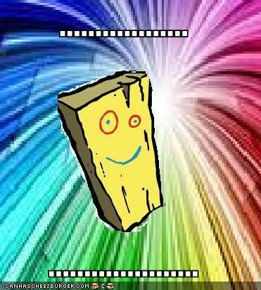 Cheezburger Image 5105897472