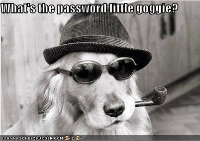 What's the password little goggie?