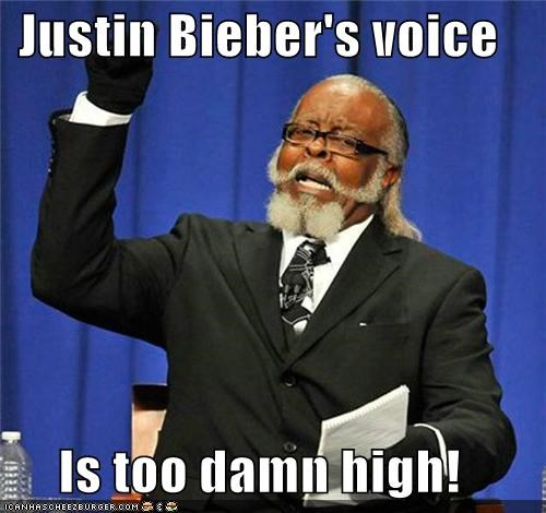 fans,high,jimmy mcmillan,justin bieber,voice