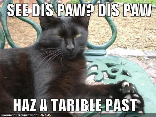 animals,Cats,I Can Has Cheezburger,past,paws,terrible,wat,wtf