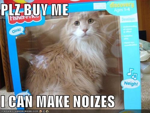 animals,boxes,buy,Cats,I Can Has Cheezburger,noises,plz,toys