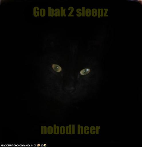 animals,Cats,creepy,darkness,I Can Has Cheezburger,sleep,stalking,watching