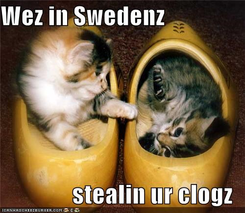 adorbz,Cats,clogs,I Can Has Cheezburger,kitten,so cute,Sweden