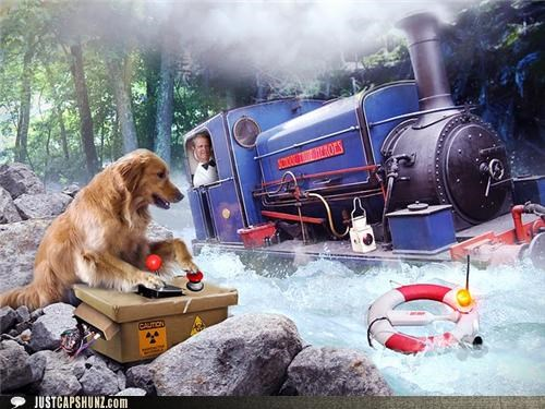 animals caption contest dogs i have no idea what im doing photoshopped trains wtf - 5106897920