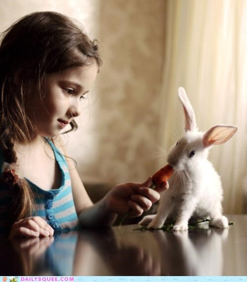 Bunday bunny carrot feeding Hall of Fame happy happy bunday human noms rabbit toddler - 5108219136