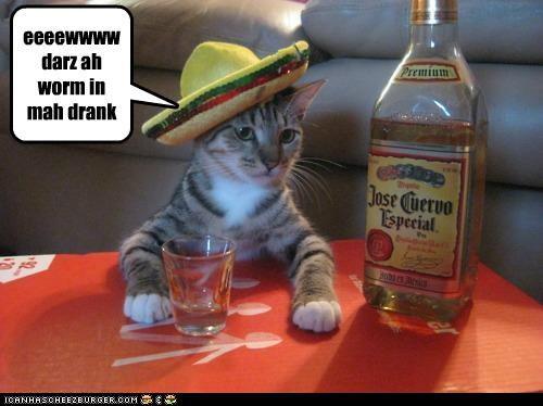 hey bartender! eeeewwww darz ah worm in mah drank
