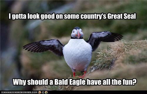 animals bald eagles birds great seal I Can Has Cheezburger puffins seals - 5108566784