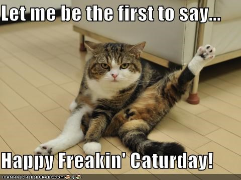 Let me be the first to say... Happy Freakin' Caturday!