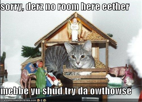 animals,Cats,I Can Has Cheezburger,jesus,mean,Nativity,no room,outhouse
