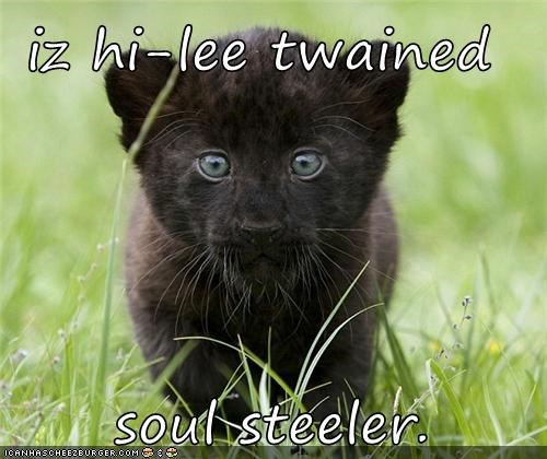 iz hi-lee twained   soul steeler.