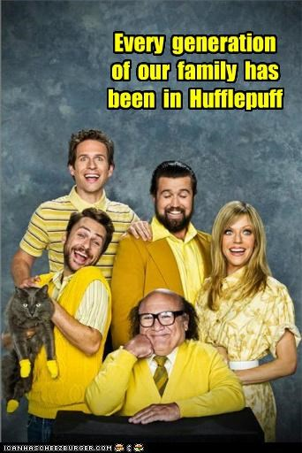 Harry Potter hufflepuff its always sunny in philadelphia roflrazzi TV yellow - 5109321472