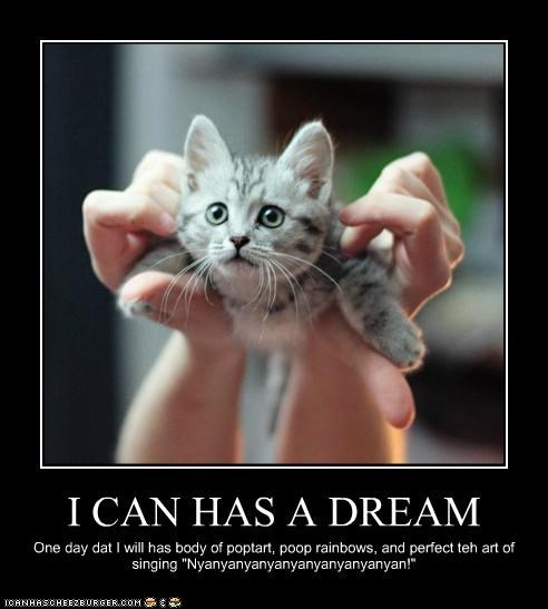 """I CAN HAS A DREAM One day dat I will has body of poptart, poop rainbows, and perfect teh art of singing """"Nyanyanyanyanyanyanyanyanyan!"""""""