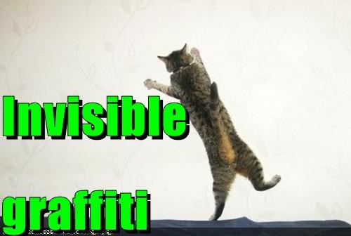 caption captioned cat graffiti invisible standing wall