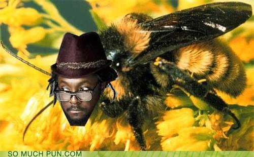be bee black-eyed peas imma be literalism song title will.i.am - 5110933760