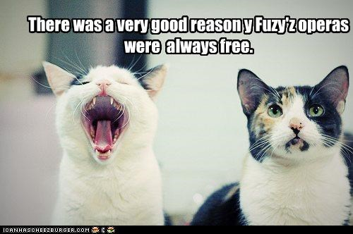 always caption captioned cat Cats do not want free good opera painful reason singing song why