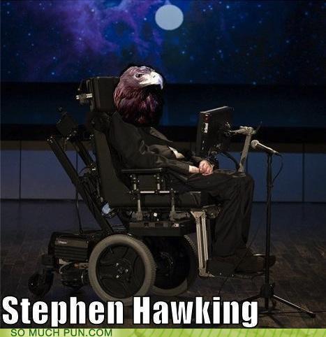 hawk head homophone homophones literalism stephen hawking - 5111627264