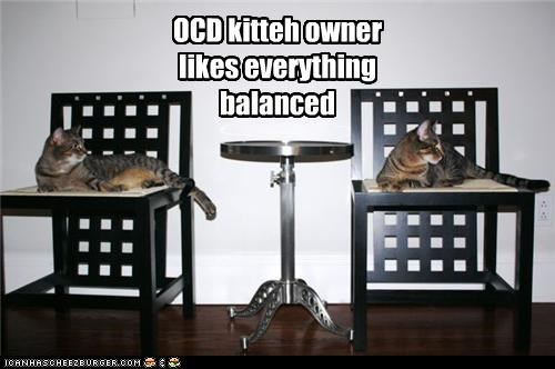 balanced caption captioned cat Cats everything likes ocd owner