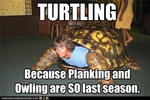 TURTLING Because Planking and Owling are SO last season.