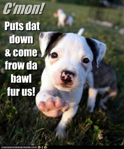C'mon! Puts dat down & come frow da bawl fur us!