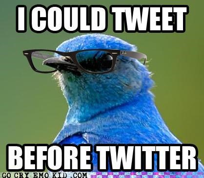 best of week,birds,hipster,hipsterlulz,tweeter,twitter