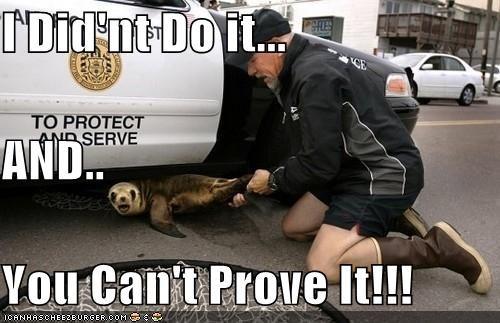 animals arrest I Can Has Cheezburger police seals weird wtf - 5115789824
