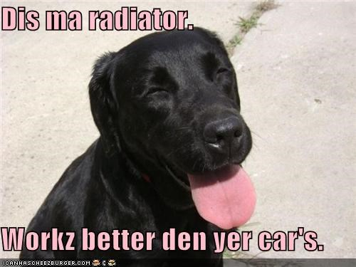 Dis ma radiator.  Workz better den yer car's.