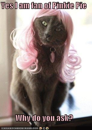cat hair pink pinkie pie wig - 5116488192
