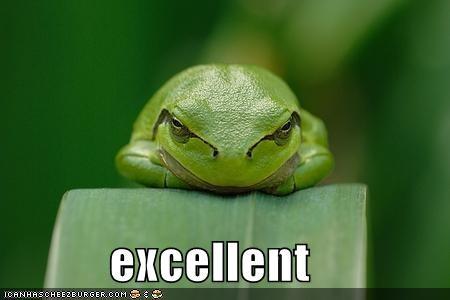 best of the week caption captioned evil excellent frog sinister - 5116611584