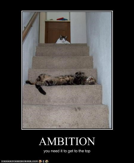 AMBITION you need it to get to the top