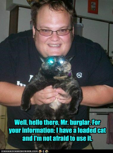 afraid burglar caption captioned cat eyes glowing hello human loaded not protection threat threatening use weapon