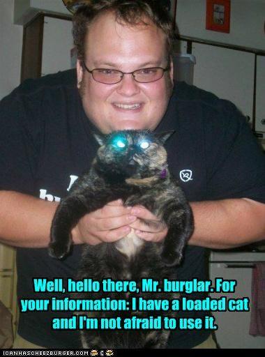 afraid burglar caption captioned cat eyes glowing hello human loaded not protection threat threatening use weapon - 5117496064