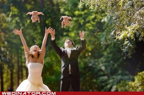 bride,chicken,funny wedding photos,groom