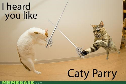 cat Cats double meaning forced homophone katy perry literalism lolwut meme Memes parry surname - 5117840128