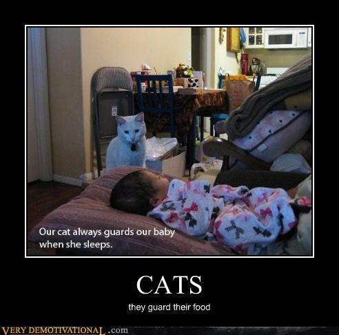 Babies Cats Caturday sad but true Terrifying - 5117979648