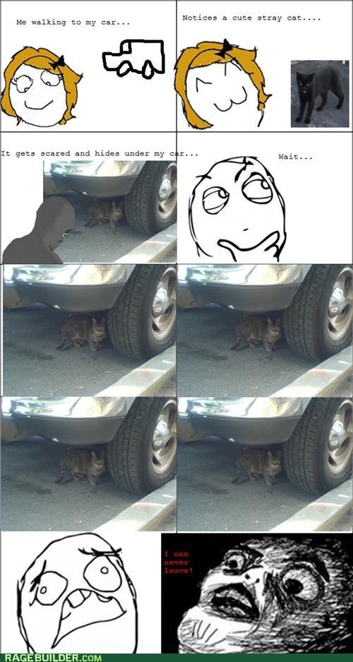 cat cute hides Rage Comics Sad stray - 5118080256