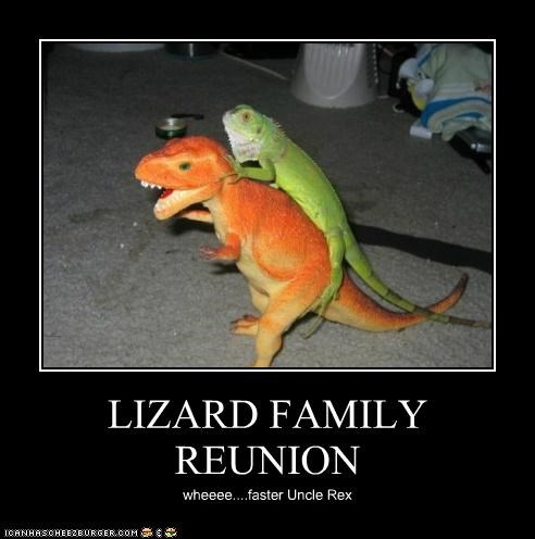 LIZARD FAMILY REUNION wheeee....faster Uncle Rex