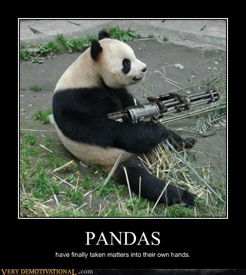 guns,panda,Terrifying,wtf