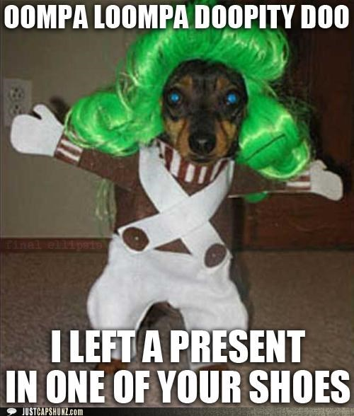 animals,costume,dogs,i has a hotdog,oompa loompa,poop,presents,Songs