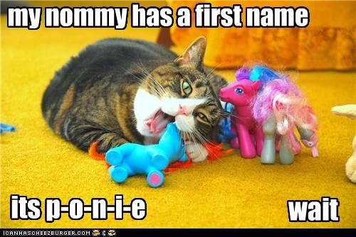 caption captioned cat my little pony name nomming noms not quite song spelling wait