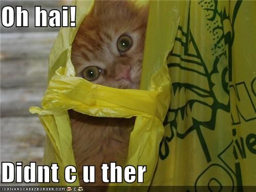 Oh hai!  Didnt c u ther
